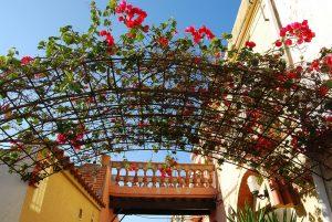ShBarcelona-distretto-horta-guinardo-aiguafreda