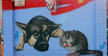 shbarcelona-graffiti-barcellona
