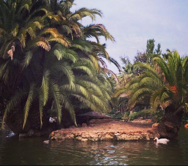 El maravilloso Parque de la Ciutadella en barcelona isla waterhellip