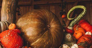 shbarcelona-halloween-castanada