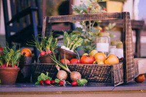 shbarcelona-orticoltura-barcellona-bio